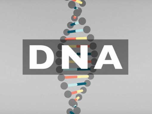 BBC : The Story Of DNA